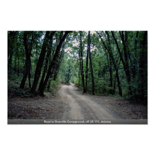 Road to Granville Campground, off US 191, Arizona Posters