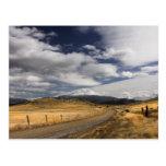 Road to MyShasta Postcard