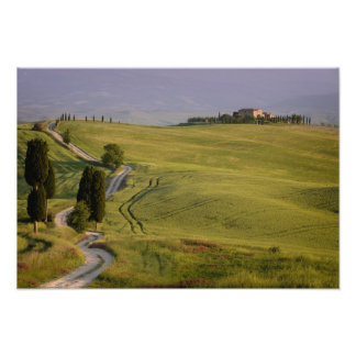 Road to Terrapille in Tuscany photo print