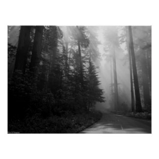 Road to the Giants Print