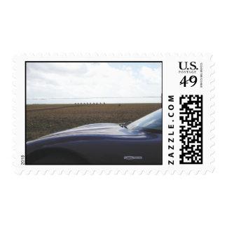 Road Trip ~ Cadillac Ranch Stamp