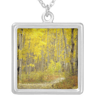 Road with autumn colors and aspens in Kebler 2 Silver Plated Necklace