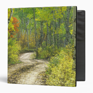 Road with autumn colors and aspens in Kebler 3 Ring Binders
