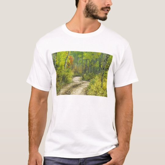 Road with autumn colors and aspens in Kebler T-Shirt