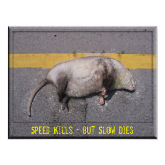 Roadkill Motivational Poster