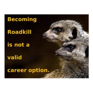 Roadkill que se convierte no es una opción válida postal