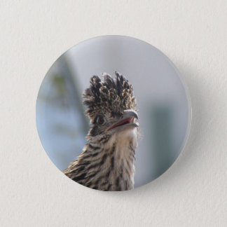 Roadrunner Close-up Pinback Button