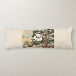 Roadrunner en el ejemplo del hábitat natural almohada larga