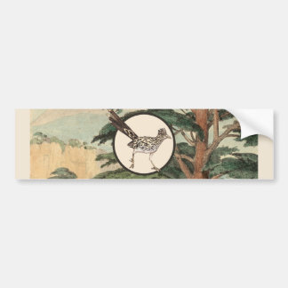 Roadrunner In Natural Habitat Illustration Bumper Sticker