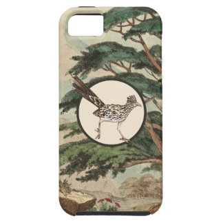 Roadrunner In Natural Habitat Illustration iPhone SE/5/5s Case