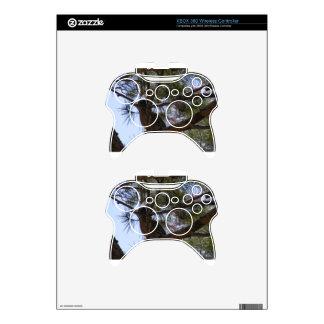Roadrunner Mando Xbox 360 Skin