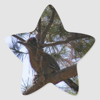 Roadrunner Pegatina En Forma De Estrella