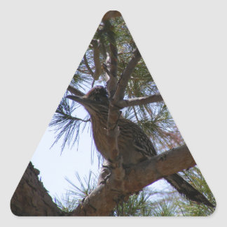 Roadrunner Pegatina Triangular