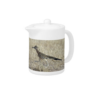 Roadrunner Photograph Teapot