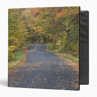 Roadside fall foliage, Southern Vermont, USA Binder