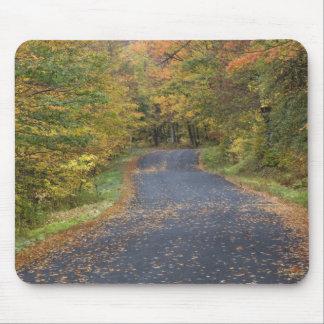 Roadside fall foliage, Southern Vermont, USA Mouse Pad