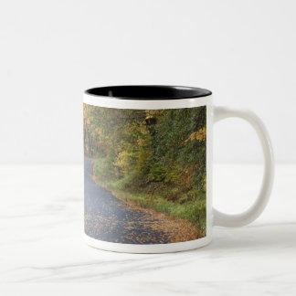 Roadside fall foliage, Southern Vermont, USA Two-Tone Coffee Mug
