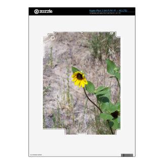 Roadside Sunflower Skins For iPad 3