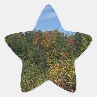 Roadside Wilderness Star Sticker