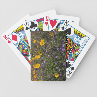 Roadside wildflowers in Texas, spring 2 Bicycle Playing Cards