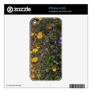 Roadside wildflowers in Texas, spring 2 iPhone 4S Decal