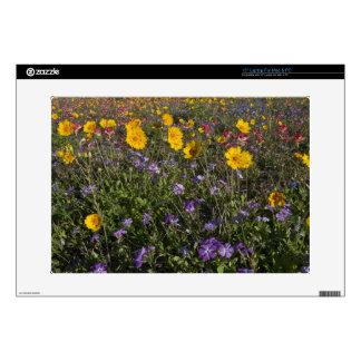 Roadside wildflowers in Texas, spring 2 Laptop Decals