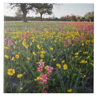 Roadside wildflowers in Texas, spring 3 Ceramic Tile