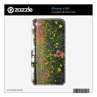Roadside wildflowers in Texas, spring 3 iPhone 4 Skin