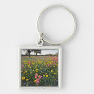 Roadside wildflowers in Texas, spring 3 Keychain