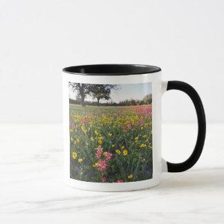 Roadside wildflowers in Texas, spring 3 Mug