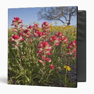Roadside wildflowers in Texas, spring 4 3 Ring Binder