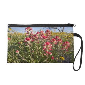 Roadside wildflowers in Texas, spring 4 Wristlet