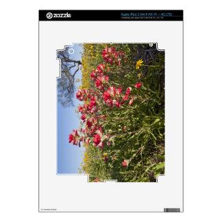 Roadside wildflowers in Texas, spring 4 Skin For iPad 3