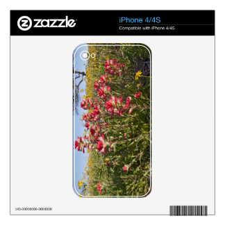 Roadside wildflowers in Texas, spring 4 Skin For iPhone 4S