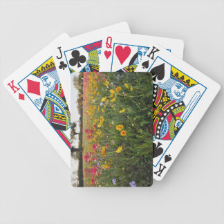 Roadside wildflowers in Texas, spring Bicycle Playing Cards