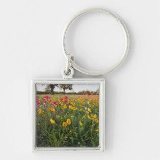 Roadside wildflowers in Texas, spring Keychain