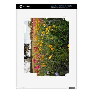 Roadside wildflowers in Texas, spring iPad 3 Skin