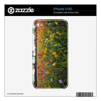 Roadside wildflowers in Texas, spring Skins For iPhone 4