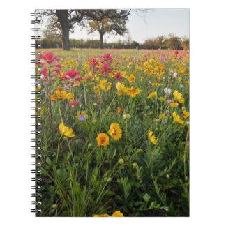 Roadside wildflowers in Texas, spring Spiral Notebook