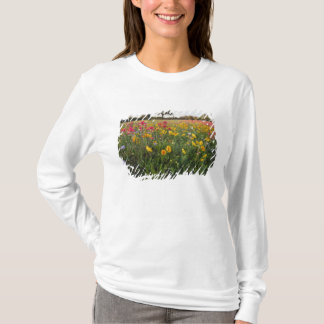 Roadside wildflowers in Texas, spring T-Shirt