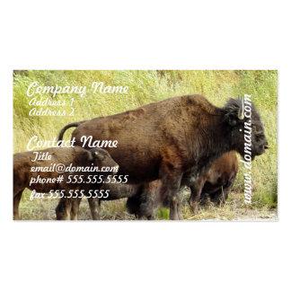 Roaming Buffalo Business Cards
