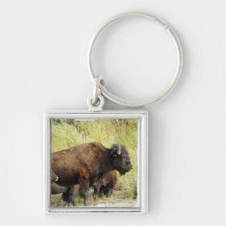 Roaming Buffalo  Keychain