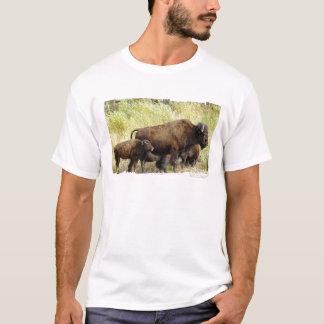 Roaming Buffalo  Men's T-Shirt