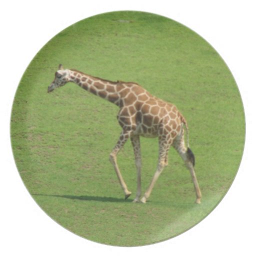 Roaming Giraffe Plate