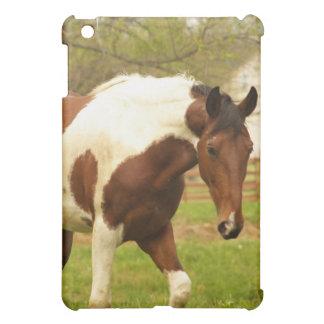 Roaming Paint Horse iPad Case
