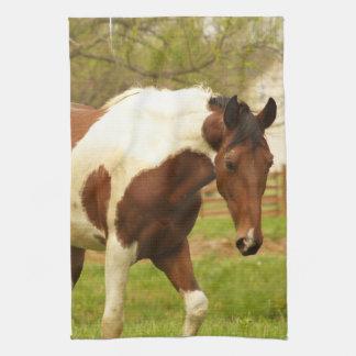 Roaming Paint Horse Kitchen Towel