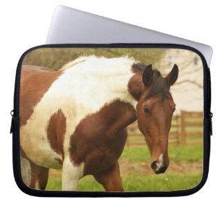 Roaming Paint Horse Laptop Sleeve