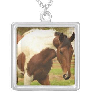 Roaming Paint Horse Necklace