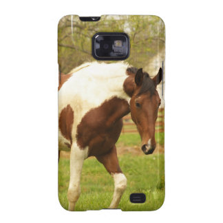 Roaming Paint Horse Phone Case Galaxy SII Case