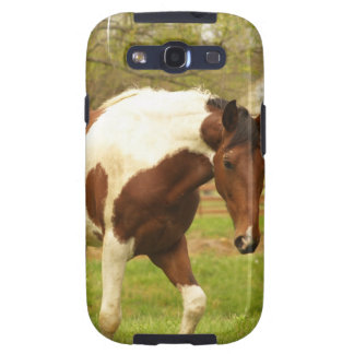 Roaming Paint Horse Phone Case Galaxy SIII Covers